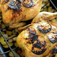 Roast Chicken with Burnt Lemon