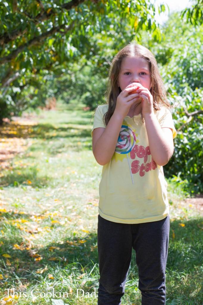 Peaches 2014-7