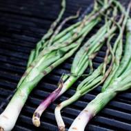 Sausage and Green Onion Crostini